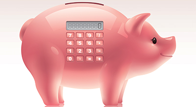 Pig_for_HomePage