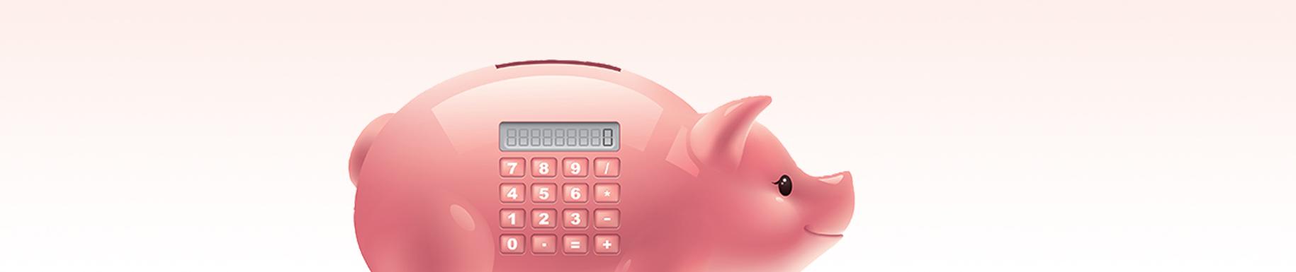 banner - pig money box